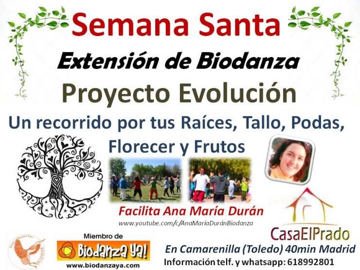 cartel semana santa proyecto evolución